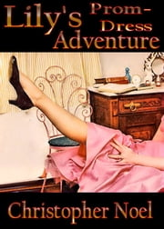 Lily's Prom-Dress Adventure ebook by Christopher Noel