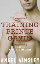 Training Prince Gavin: Vol. 1 A Tale of Submission ebook by Angel Aimsley