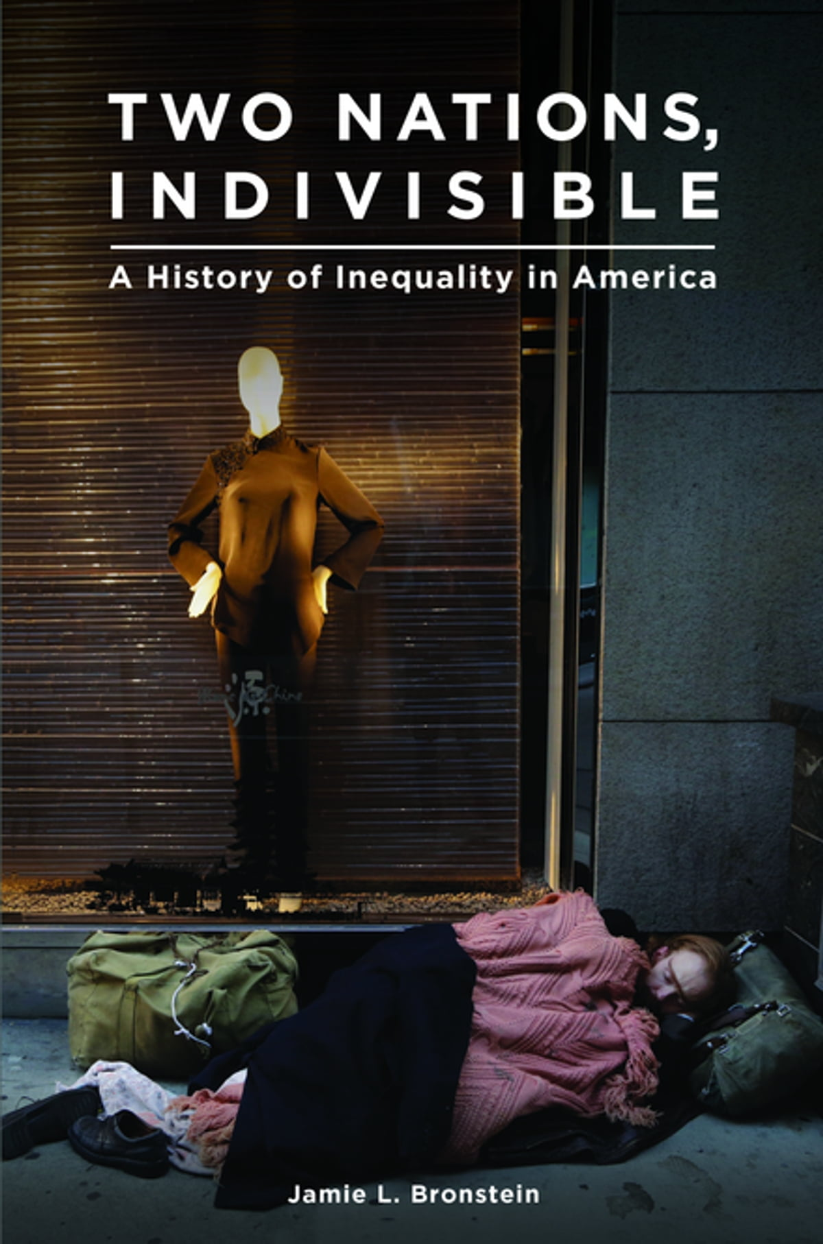 Two nations indivisible a history of inequality in america ebook two nations indivisible a history of inequality in america ebook by jamie l bronstein 9781440838293 rakuten kobo fandeluxe Document