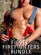 Feisty Firefighters Bundle - Aftershock\The Firefighter's Baby\Facing the Fire ebook by Jill Shalvis, Alison Roberts, Gail Barrett