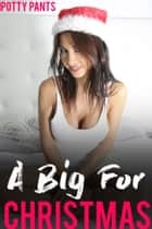 A Big For Christmas ebook by Potty Pants