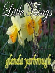 Little Things ebook by Glenda Yarbrough