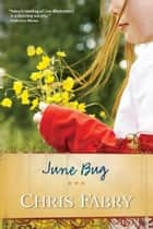 June Bug ebook by Chris Fabry