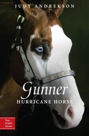 Gunner - Hurricane Horse ebook by Judy Andrekson