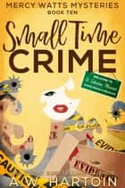 Small Time Crime (Mercy Watts Mysteries Book 10) ebook by A.W. Hartoin