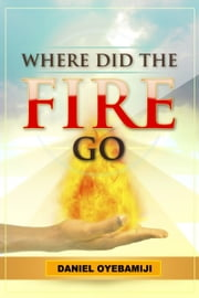 Where Did The Fire Go ebook by Daniel Oyebamiji