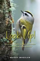 Look Up! ebook by Woodrow Wheeler