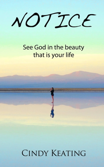 Notice - Seeing God In The Beauty That Is Your Life ebook by Cindy Keating