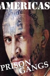 Americas Prison Gangs ebook by John McCoist