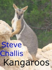 Kangaroos ebook by Steve Challis