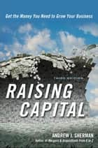 Raising Capital ebook by ANDREW J. SHERMAN