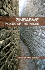 Zimbabwe - Picking up the Pieces ebook by H. Besada