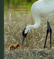 Whooping Crane ebook by Nigge, Klaus