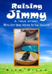 Raising Jimmy ebook by Rita Villa