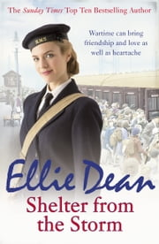 Shelter from the Storm ebook by Ellie Dean