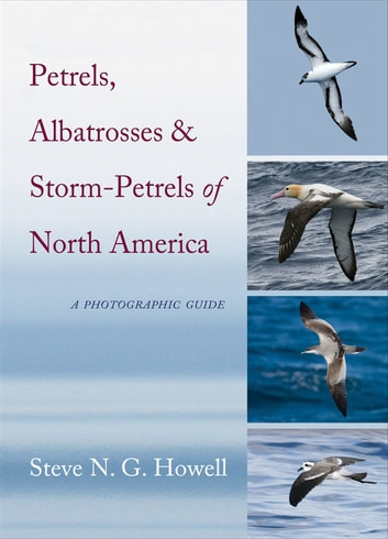 Petrels, Albatrosses, and Storm-Petrels of North America - A Photographic Guide 電子書 by Steve N. G. Howell
