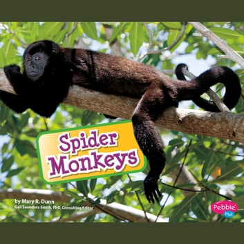 Spider Monkeys audiobook by Mary R. Dunn