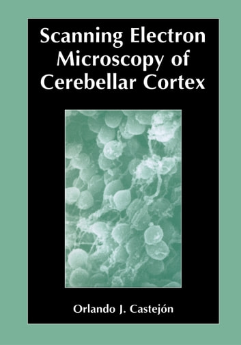 Scanning Electron Microscopy of Cerebellar Cortex ebook by Orlando Castejón