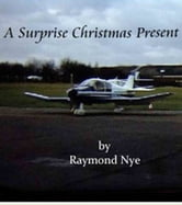 Surprise Christmas Present ebook by Raymond Nye