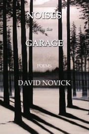 Noises from the Garage ebook by David Novick