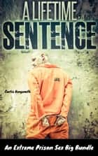 A Lifetime Sentence - An Extreme Prison Sex Bundle ebook by Curtis Kingsmith