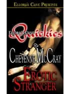 Erotic Stranger ebook by Cheyenne McCray
