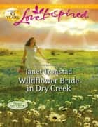 Wildflower Bride in Dry Creek (Mills & Boon Love Inspired) (Return to Dry Creek, Book 3) ebook by Janet Tronstad