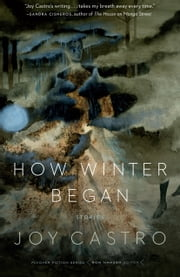 How Winter Began - Stories ebook by Joy Castro