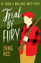 Trial by Fury ebook by Craig Rice