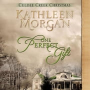 One Perfect Gift audiobook by Kathleen Morgan