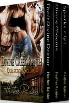 The Divine Creek Ranch Collection, Volume 4 ebook by Heather Rainier