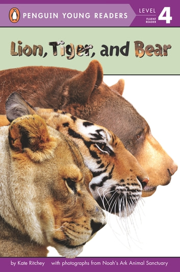 Lion, Tiger, and Bear eBook by Kate Ritchey