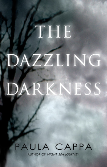 The Dazzling Darkness ebook by Paula Cappa
