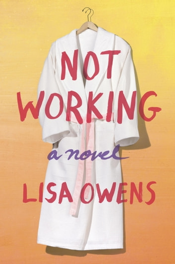 Not Working - A Novel ebook by Lisa Owens
