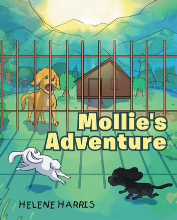 Mollie's Adventure ebook by Helene Harris