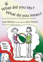 What Did You Say? What Do You Mean? - An Illustrated Guide to Understanding Metaphors ebook by Jude Welton, Jane Telford