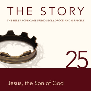 The Story Audio Bible - New International Version, NIV: Chapter 25 - Jesus the Son of God audiobook by Zondervan