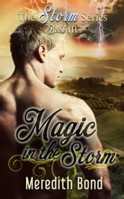 Magic In The Storm ebook by Meredith Bond