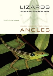 Lizards in an Evolutionary Tree: Ecology and Adaptive Radiation of Anoles ebook by Losos, Jonathan