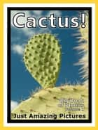 Just Cactus Plant Photos! Big Book of Photographs & Pictures of Cacti Plants, Vol. 1 ebook by Big Book of Photos