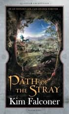 Path of the Stray: Quantum Encryption Bk 1 ebook by Kim Falconer
