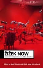 Zizek Now ebook by Jamil Khader,Molly Anne Rothenberg