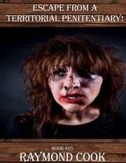 Escape From A Territorial Penitentiary! ebook by Raymond Cook