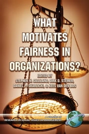 What Motivates Fairness in Organizations ebook by Gilliland, Stephen W.