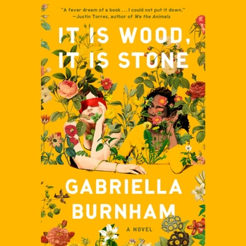 It Is Wood, It Is Stone - A Novel audiobook by Gabriella Burnham