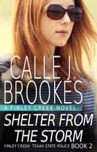 Shelter from the Storm ebook by
