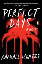 Perfect Days - A Novel ebook by Raphael Montes