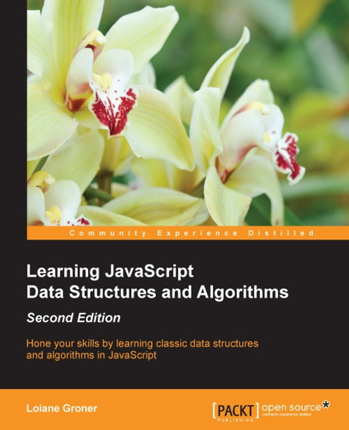 Learning JavaScript Data Structures and Algorithms - Second Edition eBook  by Loiane Groner - 9781783553884 | Rakuten Kobo