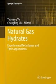 Natural Gas Hydrates - Experimental Techniques and Their Applications ebook by