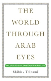 The World Through Arab Eyes - Arab Public Opinion and the Reshaping of the Middle East ebook by Shibley Telhami